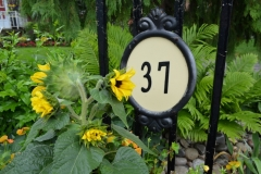 Street number framed by garden